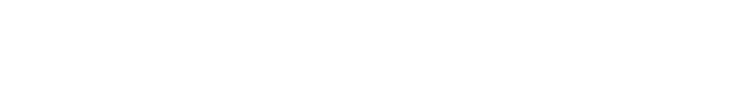 Nexus Vision